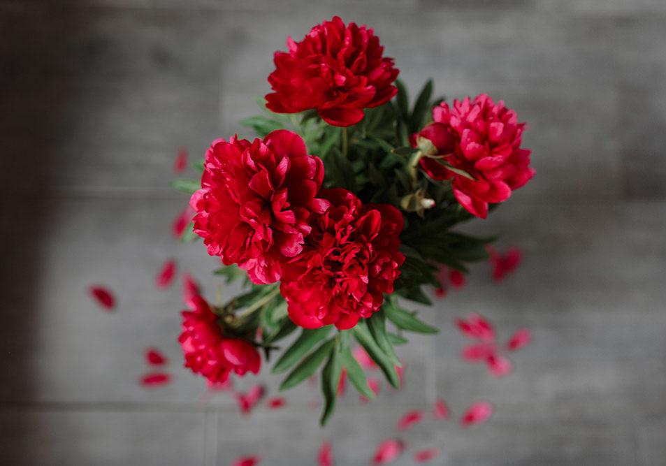 Pourquoi Rouge pivoine ? Fleuriste mariage et événementiel Pays basque Landes